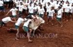 அலங்காநல்லூர் ஜல்லிக்கட்டு - சிறப்பு ஆல்பம்