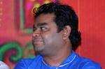காவியத்தலைவன் பத்திரிகையாளர் சந்திப்பு ஆல்பம்! படங்கள்: தீட்ஷித்