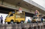 சென்னை மற்றும் மதுரையில் விநாயகர் சிலைகள் கரைப்பு - ஆல்பம்