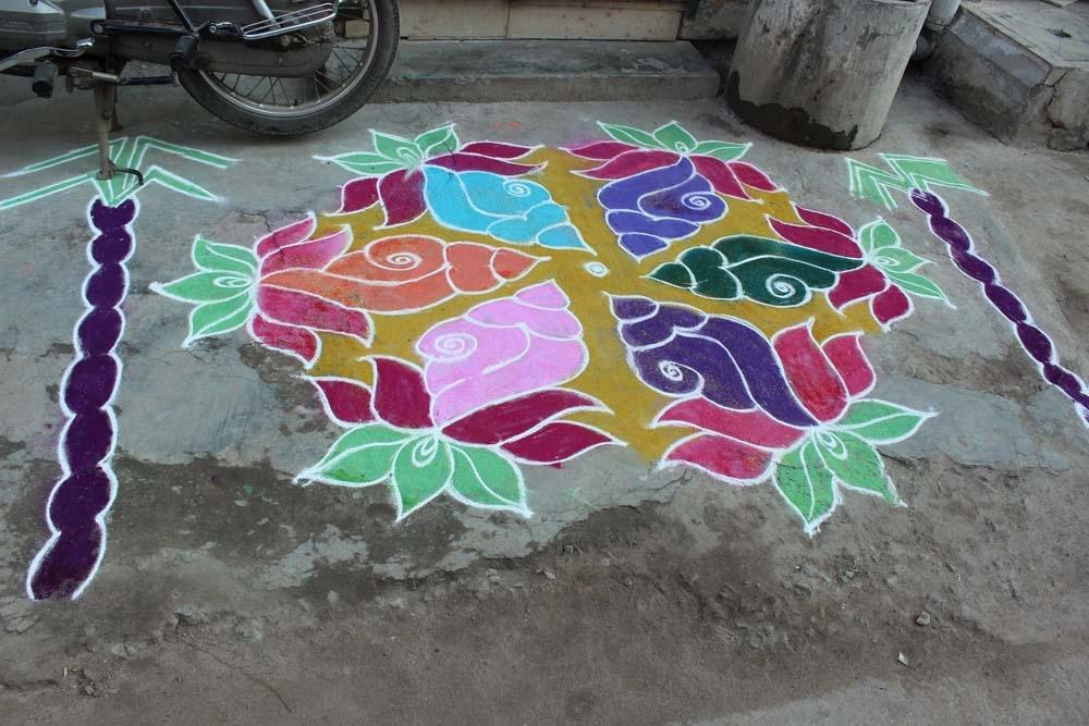 வண்ண வண்ண பொங்கல் கோலங்கள்:  படங்கள்: நா.விஜயரகுநாதன்