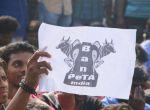 ஜல்லிக்கட்டு ஆதரவு தெரிவித்து சென்னையில் பிரமாண்ட போராட்டம் படம்தேஅசோக்குமார்