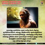 ஹோமோ சேபியன்கள் முதல் இன்றைய மனிதர்கள் வரை அறிவியலின் டைம்லைன் vikatanphotocards