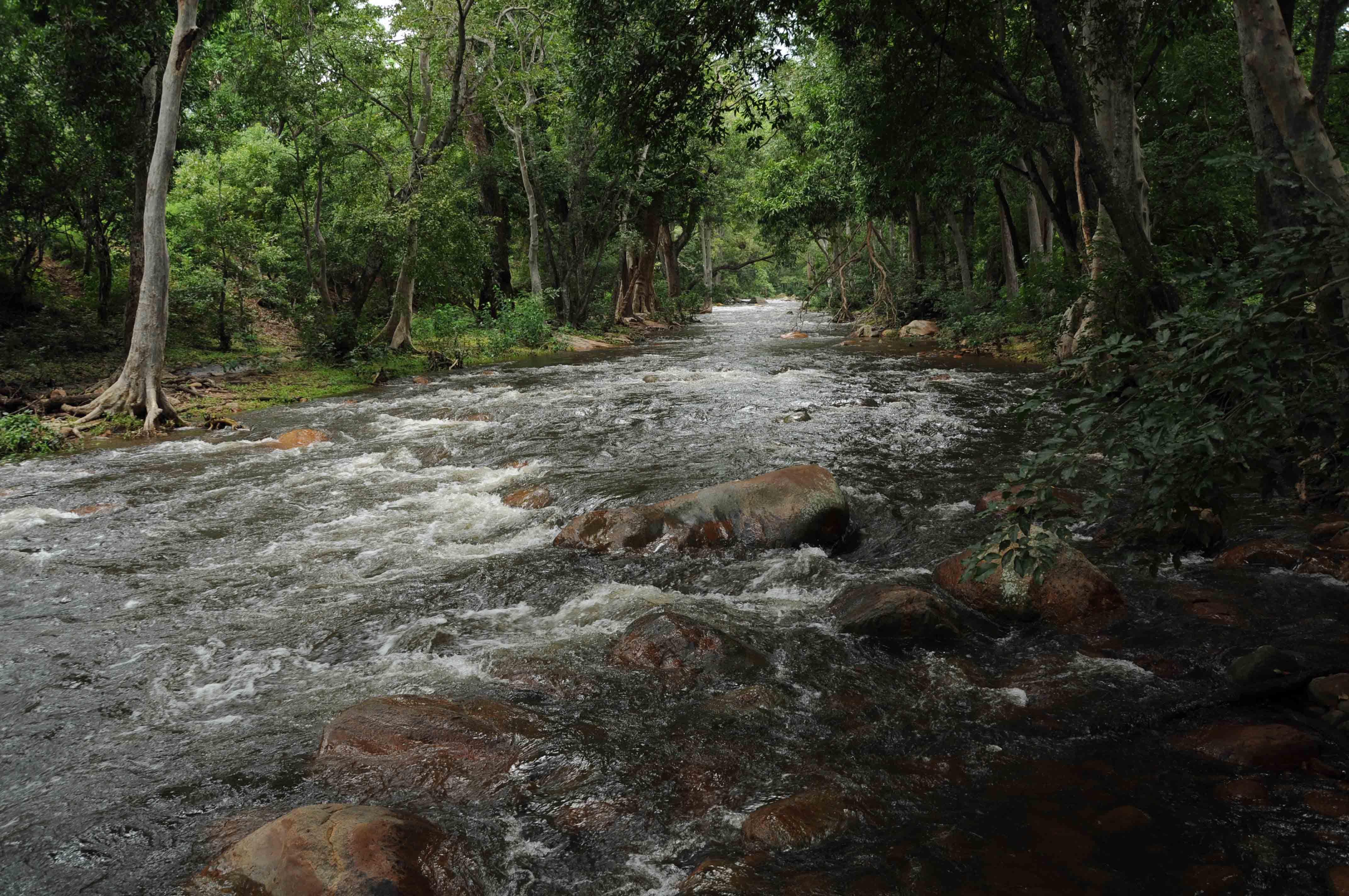 சின்னார் சூழல் சுற்றுலா திட்டம்..! படங்கள்: ரமேஷ் கந்தசாமி
