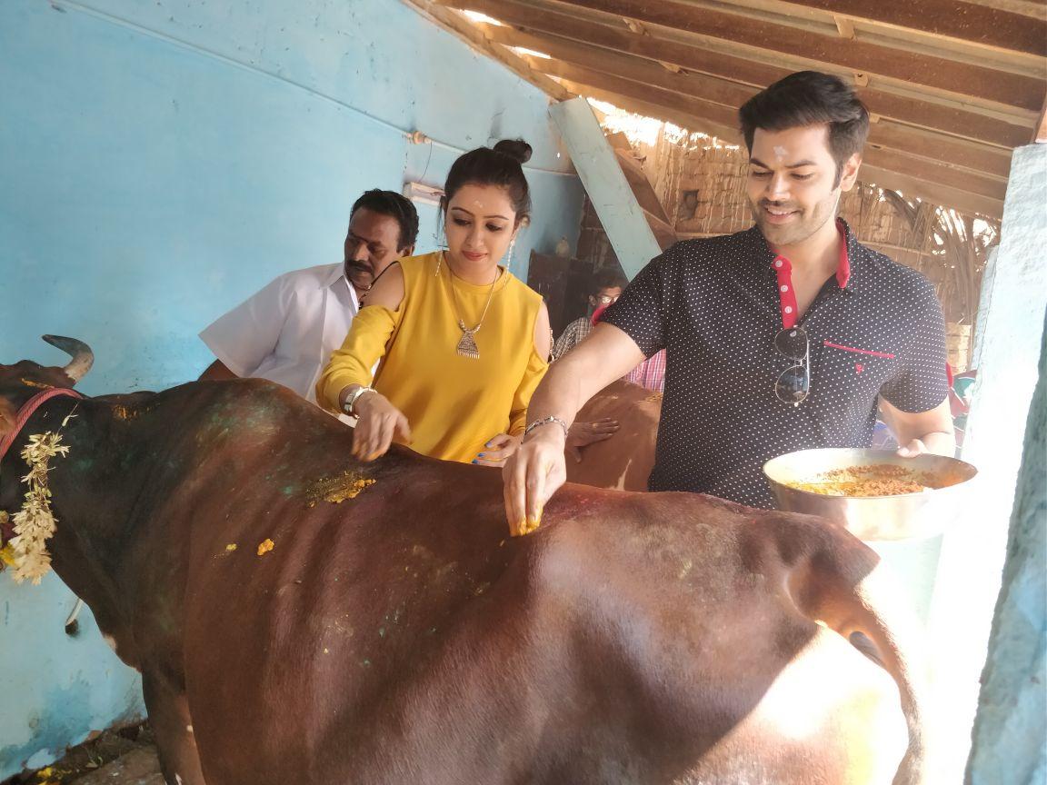 சின்னமனூரில் மாட்டுப் பொங்கல் கொண்டாடிய கணேஷ் வெங்கட்ராம் - நிஷா..!