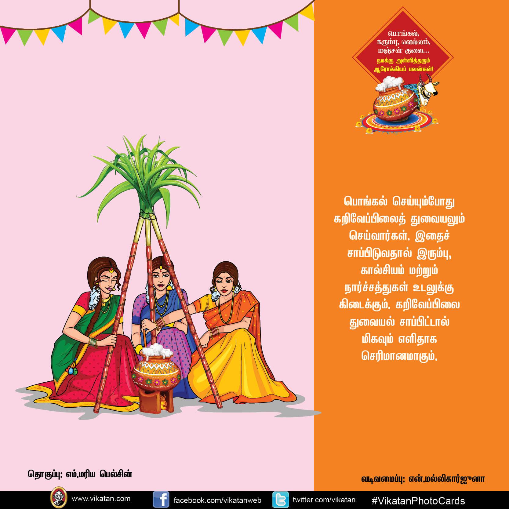 பொங்கல், கரும்பு, வெல்லம், மஞ்சள் குலை... நமக்கு அள்ளித்தரும் ஆரோக்கியப் பலன்கள்! #VikatanPhotoCards