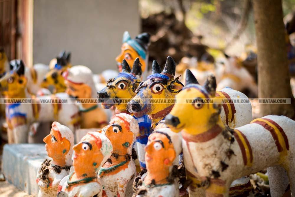 சாத்தம்பட்டி, பெரிய குறும்பப்பட்டியில் கடவுளாக மாறிய காளை கோயில்களின் சிறப்பு தொகுப்பு.. : சே.அபினேஷ்