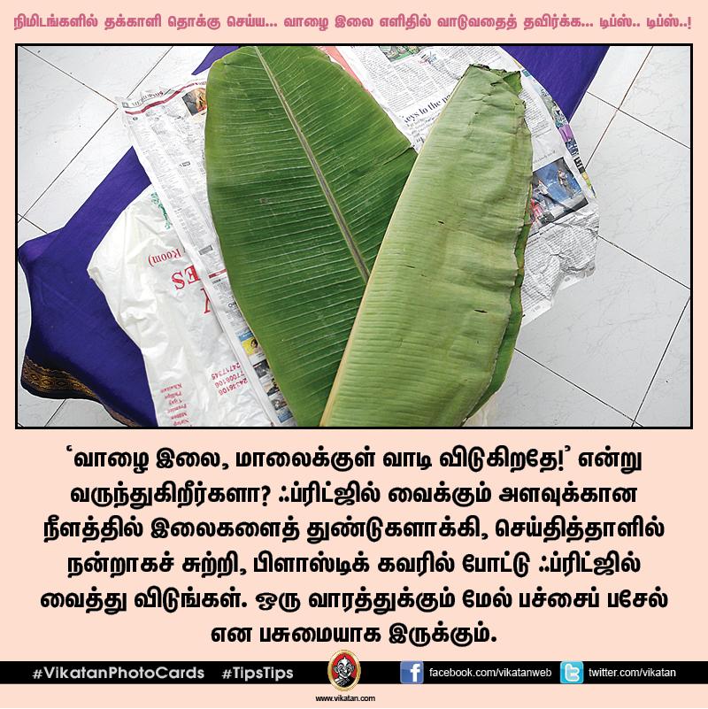 நிமிடங்களில் தக்காளி தொக்கு செய்ய... வாழை இலை எளிதில் வாடுவதைத் தவிர்க்க... டிப்ஸ்.. டிப்ஸ்..! #VikatanPhotoCards