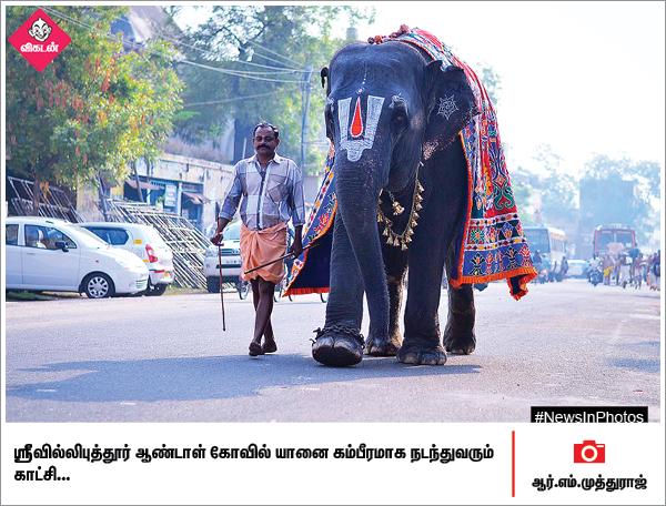 உலக ஓவியதினம்... கோவையில் நடைபெற்ற கோமாதா பூஜை... #NewsInPhotos தொகுப்பு & வடிவமைப்பு - க.குமரகுரு