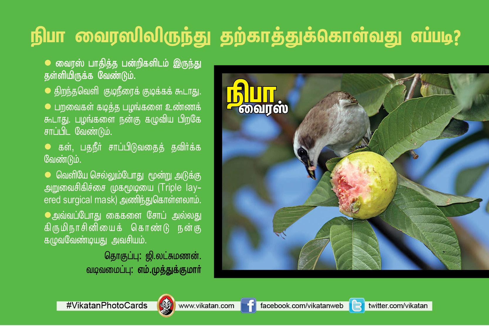 நிபா... அறிந்துகொள்ளவேண்டிய அவசியத் தகவல்கள்! #VikatanPhotoCards