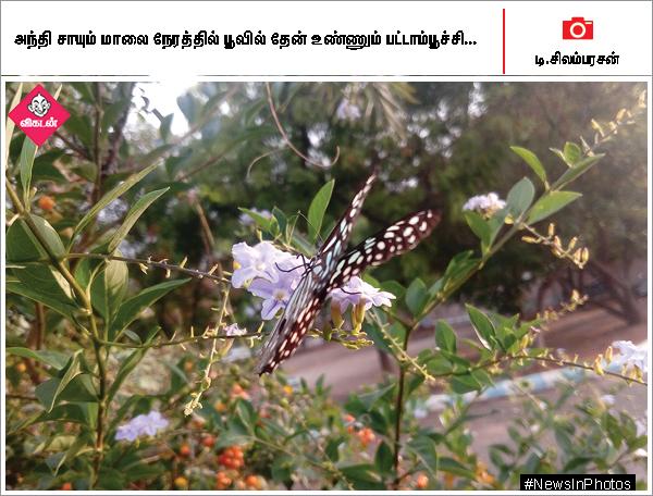 24 வகை மரக்கன்றுகளை நடும் போலீஸ் அதிகாரி... தமிழ் மாநில காங்கிரஸ் நிர்வாகிகள் ஆலோசனைக் கூட்டம்... #NewsInPhotos