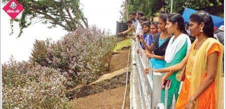 கொடைக்கானலில் பூத்த குறிஞ்சி மலர்கள்... சாயக்கழிவு கலக்கப்பட்ட அமராவதி ஆறு... #NewsInPhotos