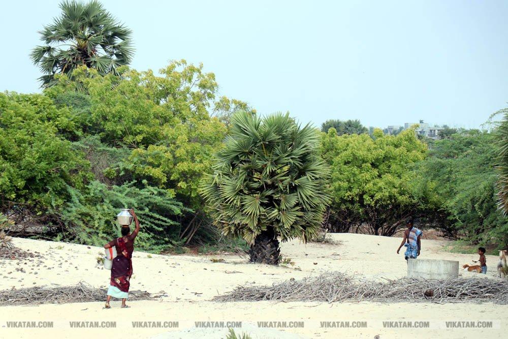 ராமேஸ்வரம், சேரான்கோட்டை பகுதியில் ஊற்றுக்குள் குடிநீர் தேடும் கிராம மக்களின் நிலை.... சிறப்பு தொகுப்பு: உ.பாண்டி