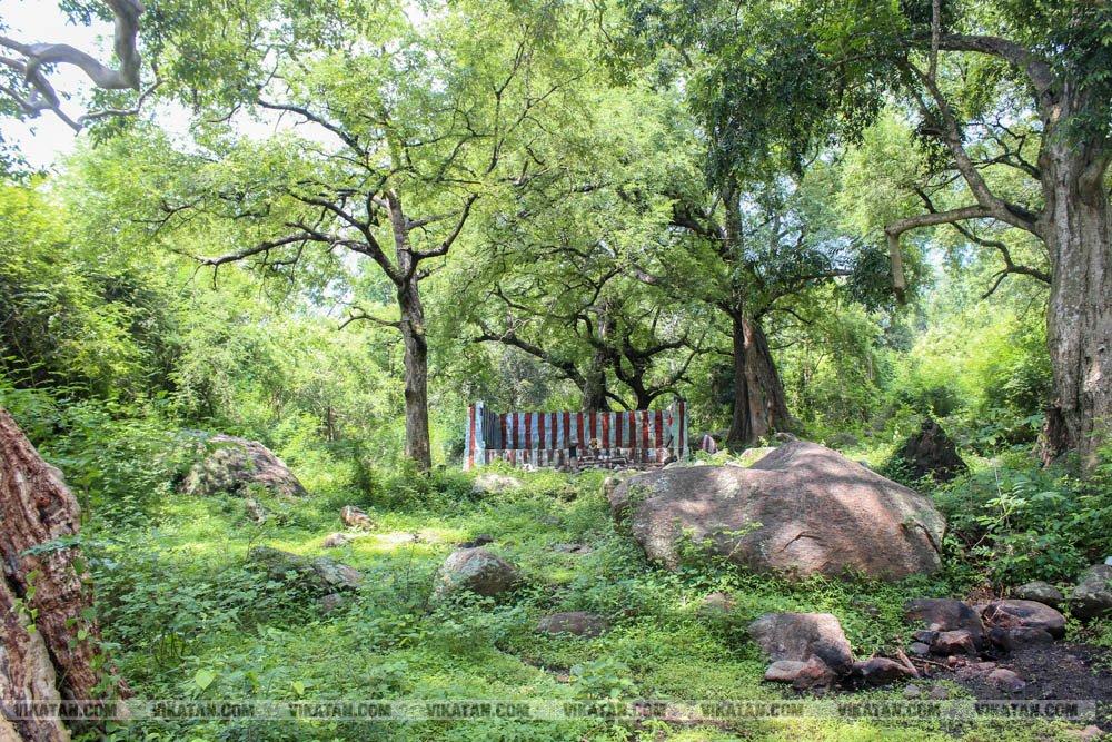 வீக் எண்ட் ட்ரிப்பா... செண்பகா தோப்புக்கு ஒரு விசிட் அடிங்களேன்!... படங்கள்: ஆ. வள்ளிசௌத்திரி