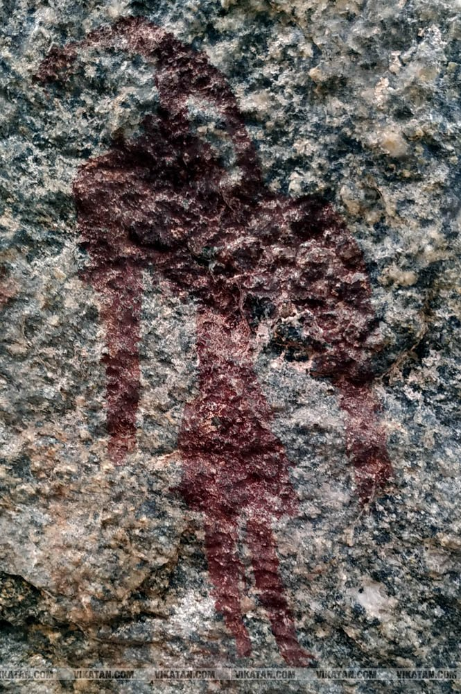 கீழ்வாலை கிராமத்தில் 1000 ஆண்டுகளுக்கு முந்தைய பாறை ஓவியங்கள்... #SpotVisit படங்கள்: தே.சிலம்பரசன்