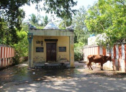 கோவை குடலூர் மாரியம்மன் கோவில்... படங்கள் :ஆயிஷா அஃப்ரா