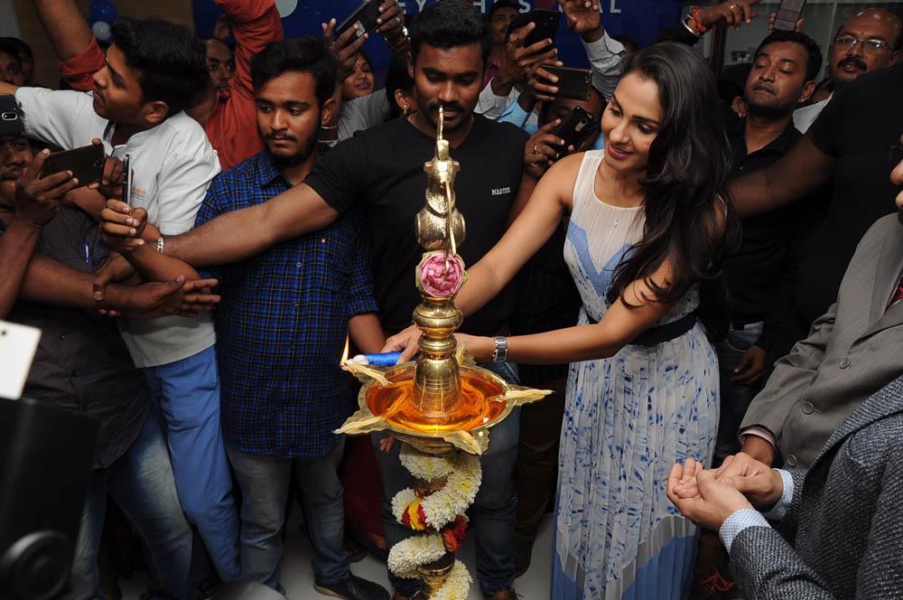 ஆண்ட்ரியா ஸ்டில்ஸ்... படங்கள்: ரமேஷ் கந்தசாமி