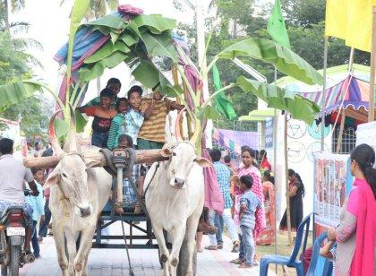 உத்தரமேரூரில் நடைபெற்ற சுகாதார திருவிழா 2019: படங்கள்: அபினேஷ் தா