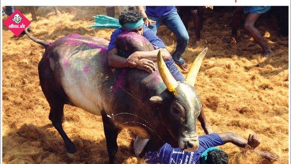 திண்டுக்கல்லில் நடைபெற்ற ஜல்லிக்கட்டு... பல்வேறு கோரிக்கைகளை வலியுறுத்தும் ஜாக்டோ-ஜியோவினர்... #NewsInPhotos