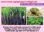 மசாலா உணவு, மதுப்பழக்கத்தால் வயிற்றுப் புண்: நலம் பெற சித்த மருத்துவர் ஆலோசனை! #VikatanPhotoCards