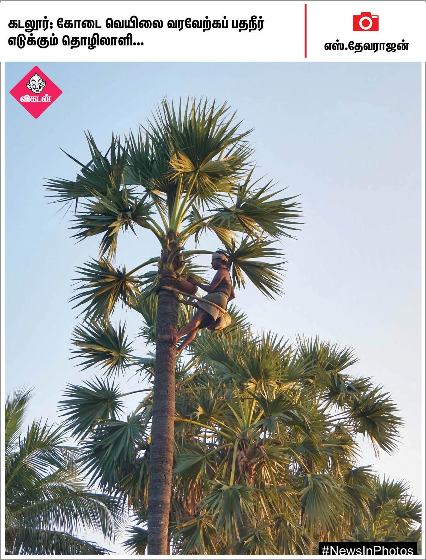 செல்லூர் ராஜூ தொடங்கிவைத்த விளையாட்டுப் போட்டிகள்... நெல்லைக்கு வந்த சிரிய தேசப் பறவைகள்... #NewsInPhotos