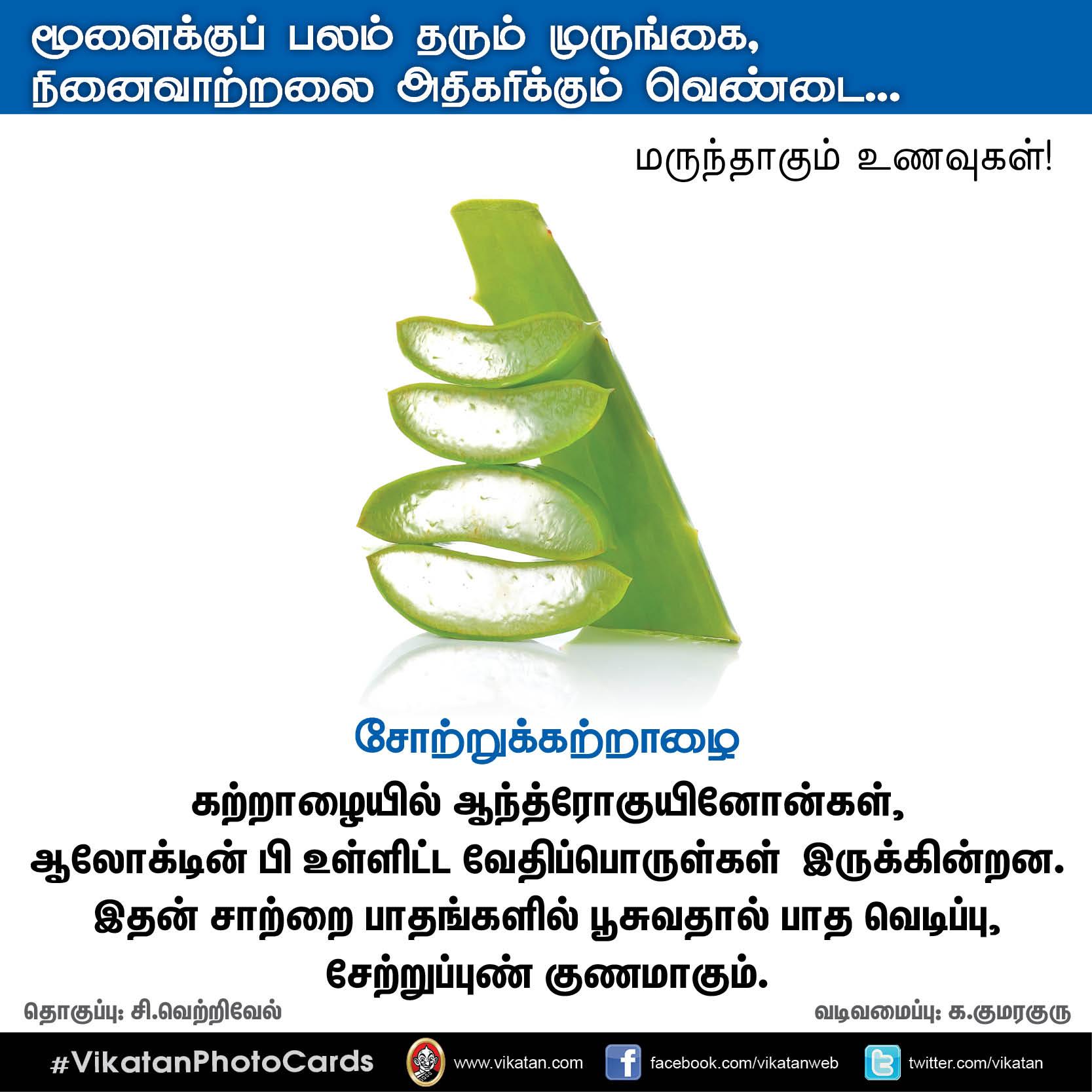 பசியின்மை போக்கும் கத்திரி, நினைவாற்றல் அதிகரிக்கும் வெண்டை... மருந்தாகும் காய்கறிகள்! #VikatanPhotoCards