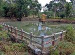 குமரியின் புராதன சின்னமாக விளங்கும் புலியூர்குறிச்சி உதயகிரி கோட்டை