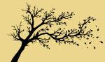 வீரயுக நாயகன் வேள் பாரி - 111 -சு.வெங்கடேசன் - சரித்திர தொடர் P83f