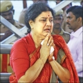Sasikala Political entry - What next? - Ananda Vikatan