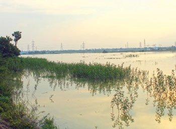 நிலம்... நீர்... நீதி! - ``ஏரிக்கரையை மட்டுமில்ல,  ஊரையும் காப்பாத்தியாச்சு!''
