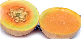 30 வகை சம்மர் டிரிங்ஸ்