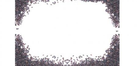 அஞ்சறைப் பெட்டி: எள் - ரத்த அழுத்தத்தைச் சீராக்கும்... சரும ஆரோக்கியத்தைக் காக்கும்