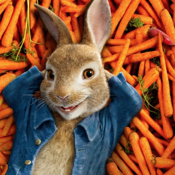 அப்பாவி முயல்களுக்குள் இத்தனை வன்முறையா... ஏன் Peter Rabbit இப்படி இருக்கிறது?