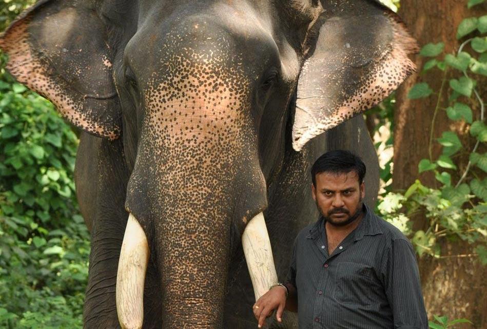 பிரபு சாலமன்