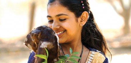 விமர்சனங்களை எதிர்கொள்கிற வயது - ஆனந்தம் விளையாடும் வீடு - 24