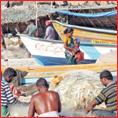 மீனவர்களை அச்சுறுத்தும் இலங்கை... மீட்பாரா மோடி?