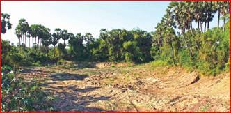 ஜூனியர் 360: ரூ.2,251 கோடி மண் கொள்ளை!