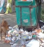 சென்னை தெருக்களில் குப்பைகளை கொட்டினால் ரூ.2000 அபராதம்!