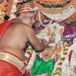 ராமேஸ்வரம் ராமநாதசுவாமி திருக்கோயிலில் ஆடி திருக்கல்யாணம் (படங்கள்)
