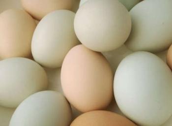 Complete Information egg!
