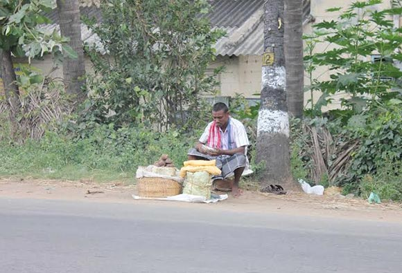 Palm Jaggery Seller