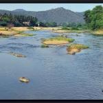 காவிரியில் ஒரு நாளைக்கு 148.4 கோடி கழிவு நீரை திறந்துவிடும் கர்நாடகா!
