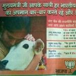 தேர்தல் கமிஷனையே மிரள வைத்த பா.ஜனதாவின் பசு விளம்பரம்!