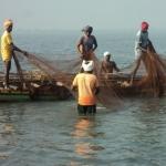 தமிழக மீனவர்கள் 4 பேர் சிறைபிடிப்பு: இலங்கை கடற்படை அட்டூழியம்!