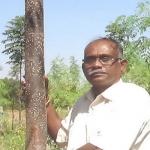 ஐயப்பா மசாகி- வறட்சியிலும் நீர் சேமிக்க வழி சொன்ன மனிதர்!