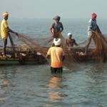 தமிழக மீனவர்கள் 16 பேர் சிறைபிடிப்பு! -இலங்கை கடற்படை மீண்டும் அட்டூழியம்