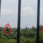 கேள்விக் குறியாகும் பாதுகாப்பு: சிறார் மையத்தில் தப்பித்த 34 சிறார்கள் (வீடியோ)