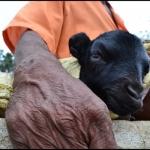 'ஓய்வுக்கே ஓய்வு கொடுத்தவண்டா!' - கிராமத்துப் பெரியவர் கலகல!