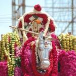பரிவேட்டை திருவிழா... களைகட்டிய கன்னியாகுமரி!