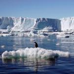 உலகின் மிகப்பெரிய கடல் பூங்கா : 24 நாடுகள் ஒப்புதல்