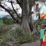 அதிகாரிகளின் அலட்சியத்தால் அடுத்தடுத்து பலியான பெண்கள்..! பதற வைக்கும் மரண மருதமரங்கள் (வீடியோ)